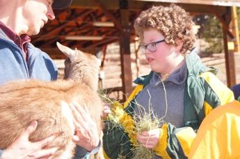 Loved feeding hay