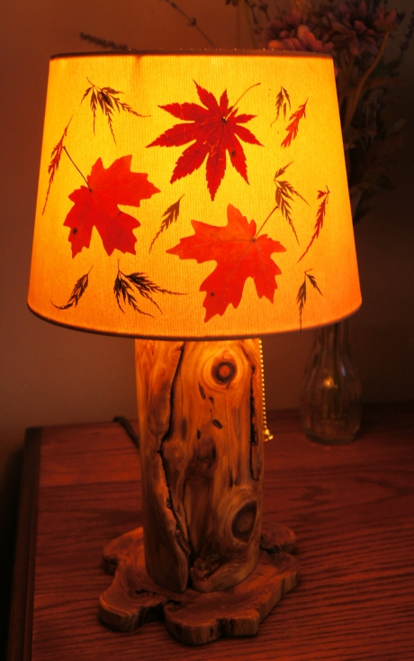 Drum shade for small lamp